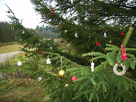 Der Tannenbaum - Weihnachtsmärchen